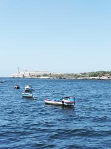 981 Havana Havana Harbor